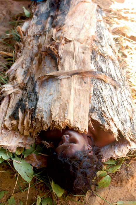 40,000-year-old health treatment In Arnhem Land. Image by Amy Jo Vickery