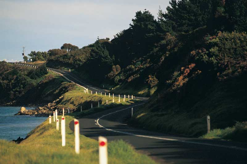Drive along the world's largest war memorial. Image by Tourism Vic