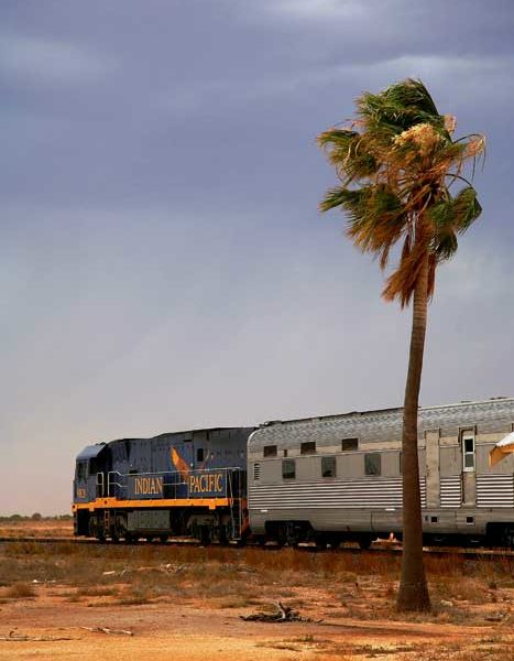 The Nullarbor: The straightest way to locomote. Image by Greg Barton