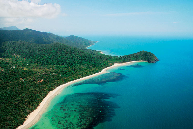 Stand where the Danitree Rainforest meets the Great Barrier Reef. Image by Tourism QLD