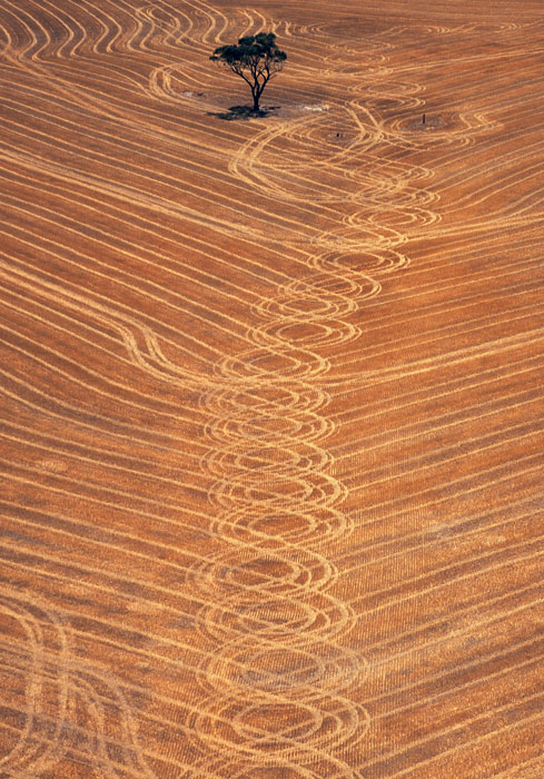 Harvested wheat field, Borden, WA. The harvester creates a circular pattern as it turns the corners. Image by Richard Woldendorp