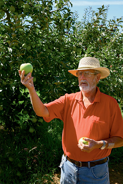 What Max from Hillside Orchard doesn't know about apples probably isn't worth knowing. Image by Tom Barclay