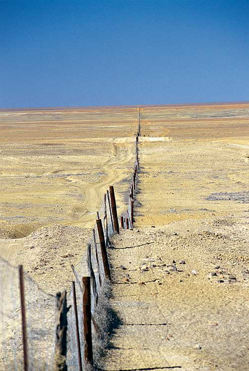 A small part of the famous 5320km-long Dog (or Dingo) Fence