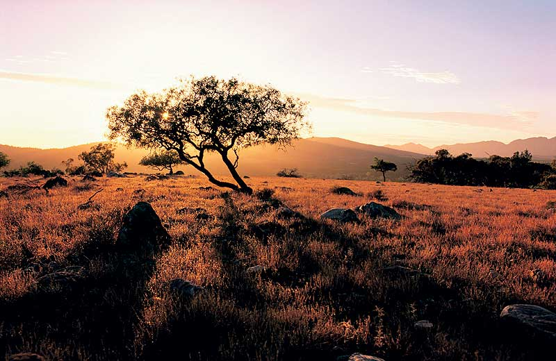 Sunset on the Flinders Ranges