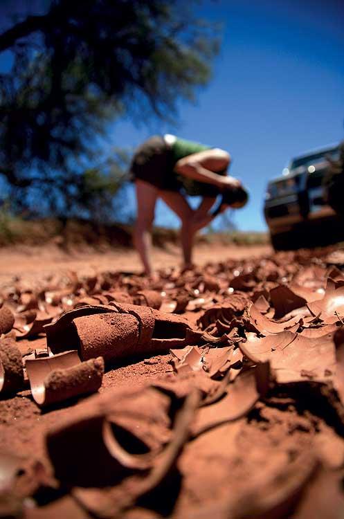 Dried mud flakes on a 4WD track near Finke Gorge.