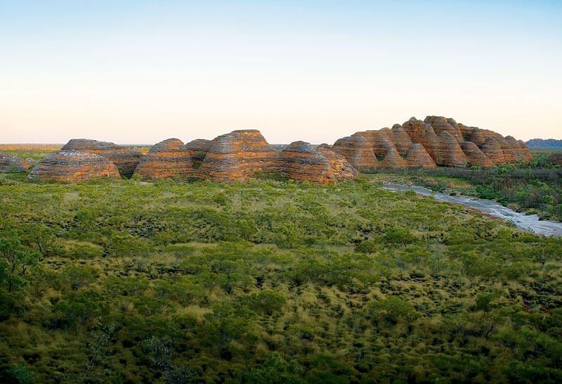 The banded bee hives of the Bungle Bungles. Image by David Bristow