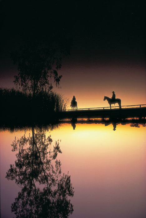 Longreach is the mythical place of romance and horsemanship. Image by Tourism QLD