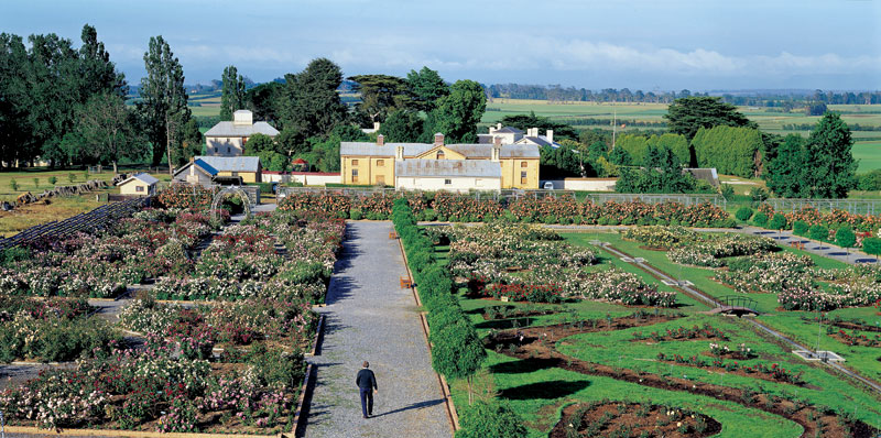 Woolmers Estate's famous rose garden. Image by Tourism Tas.