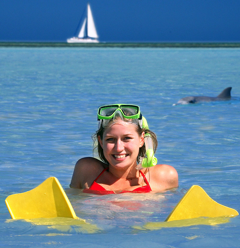 Up close with dolphins at Monkey Mia Dolphin Resort Camping. Image by Monkey Mia Dolphin Resort