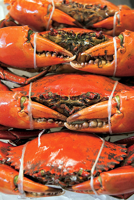 Scour the local seafood and farmers' markets for inexpensive ways to eat like royalty.