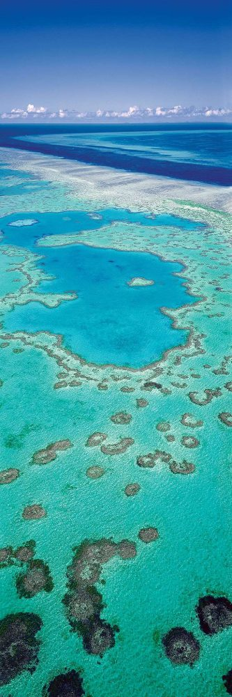 The absurd perfection of Heart Reef, hidden deep in the centre of Hardy Reef in the outer Whitsundays. Image by Ken Duncan