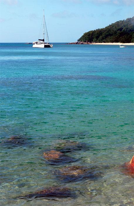 Free public moorings are available at Fitzroy Island. Image by Tourism Qld