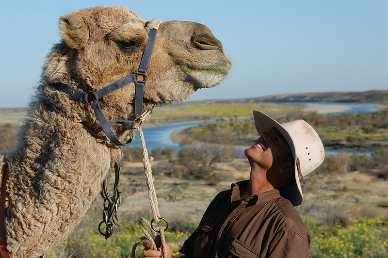 Andrew Harper and one of the charges. Image by Outback Camel Company