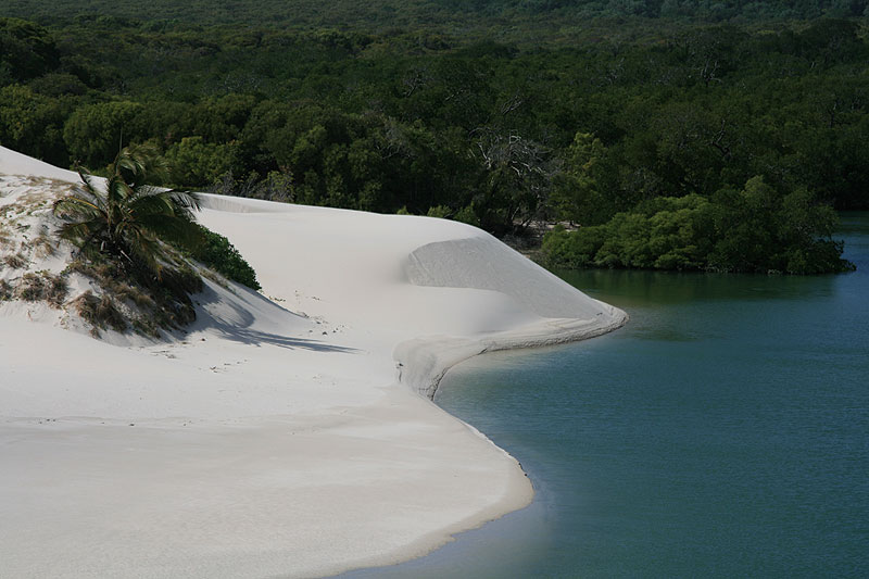 Where land meets sea in Cape York. Image by Wilderness Challenge