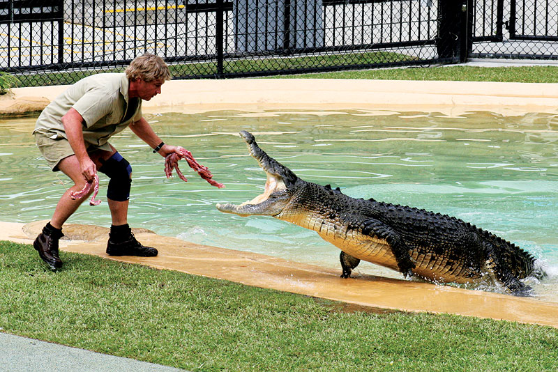 The one and only Steve Irwin, RIP. Image by Paul Williams, www.sardrabbit.com