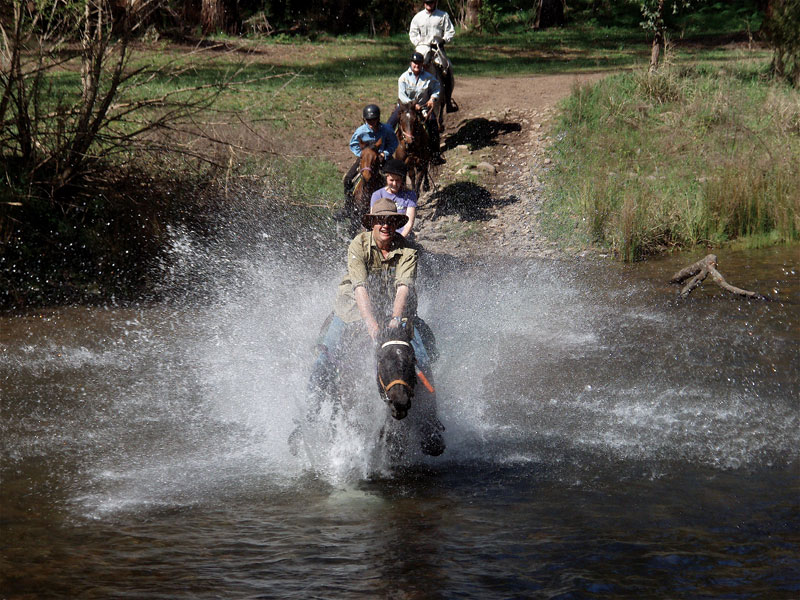 One of the many, many river crossing undertaken following the heritage trail. Image by Watson's Mountain Country Trail Rides