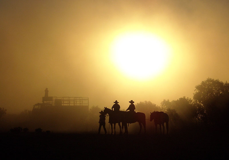 The end of the mustering day through the dust at Yarrie Station, north of Marble Bar, Pilbara, WA. By AT Reader Peter Wright