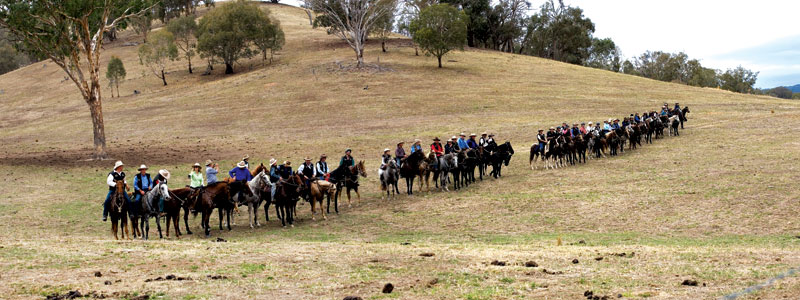Riley's Riders arrive for the Man From Snowy River re-enactment --images courtesy of Peter Bennett