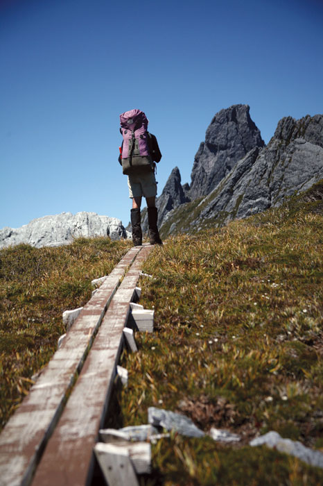 The boardwalk approach to Federal Peak in Tassie's Southwest National Park. Image by Tourism Tasmania