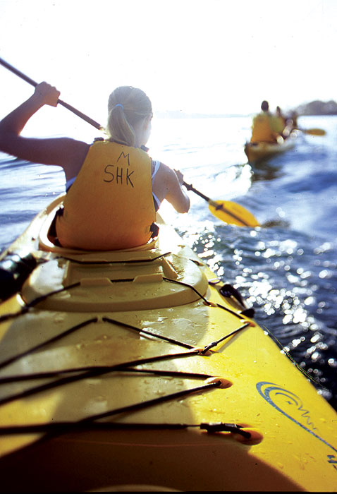 One the water in a kayak is the best view of Sydney Harbour