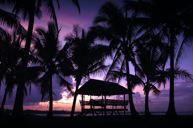AT Reader Rene Norwie awoke to this magnificant sight at Palm Cove.