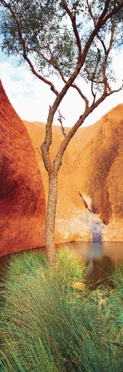 Mutitjulu, Water of Life.