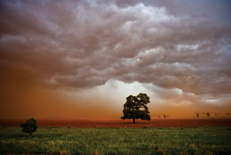A massive dust storm followed by a torrential rainstorm in wheat-growing country. Photography by Michael Silver.