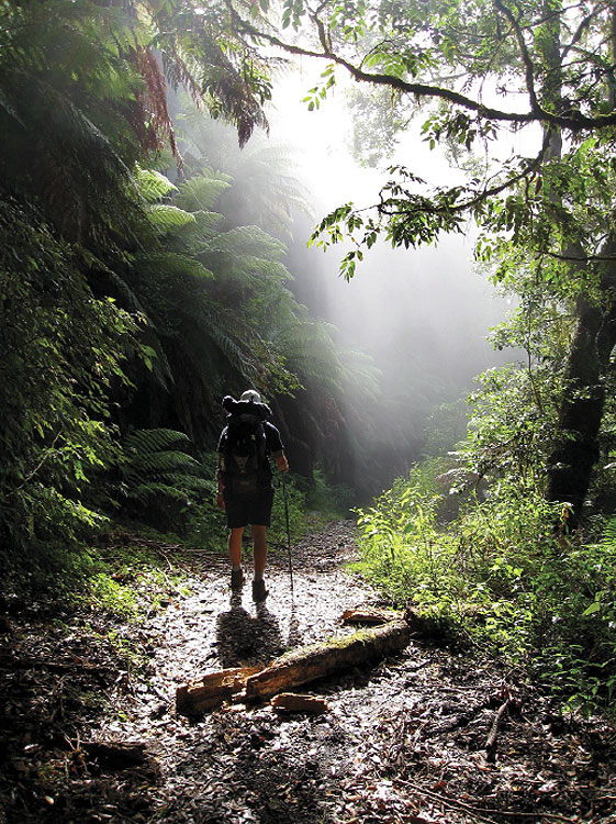 My Escape Winner Descending the Corker Trail, By Shandos Cleaver As we descended the knee-pounding 900m descent of the Corker Trail in the NSW Barrington Tops, the thick morning fog lingered making it seem like anything could be around the next bend