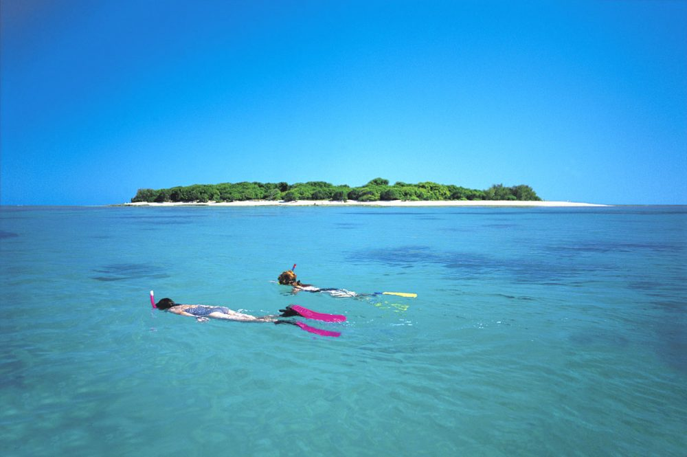 Lady Musgrave Island. Image courtesy Tourism Queensland