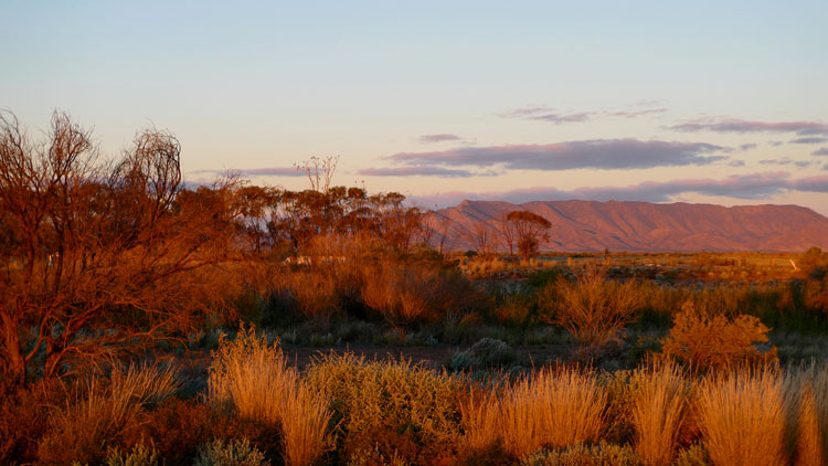 Beautiful views of the Flinders Ranges