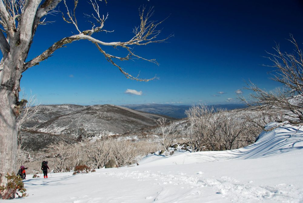 Magnificent views over Kosciuszko National Park