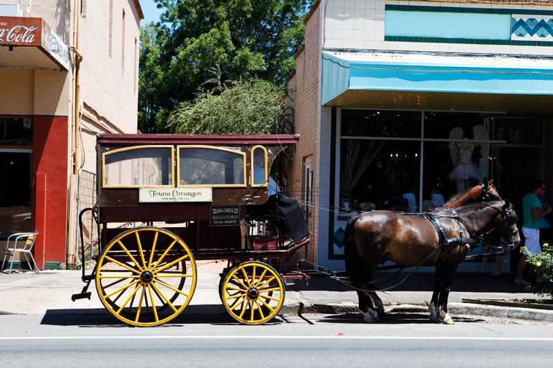 A horse and carriage on the main street of Berry. Image by Pavel Sigarteu