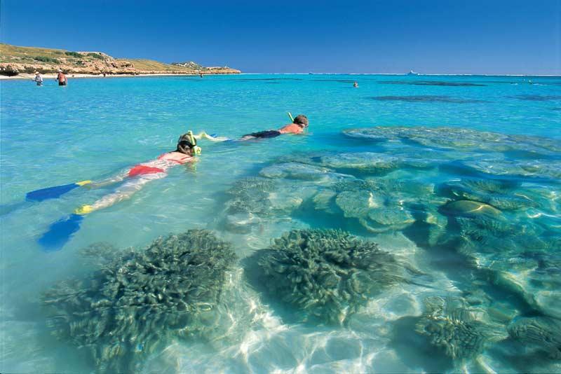 Snorkelling WA's Ningaloo Reef.