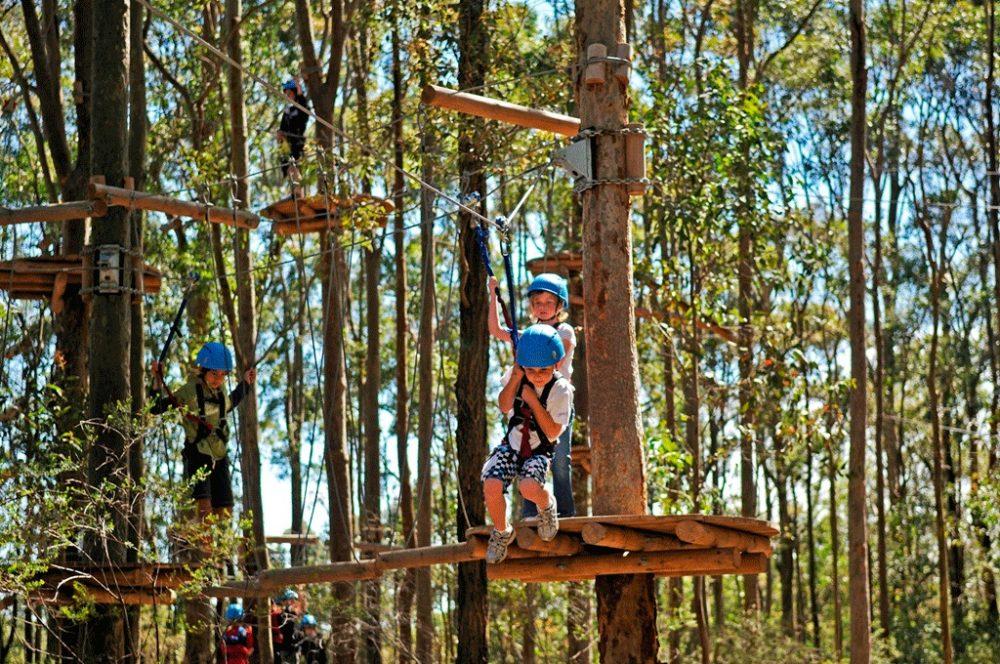 Adventure Tree Park
