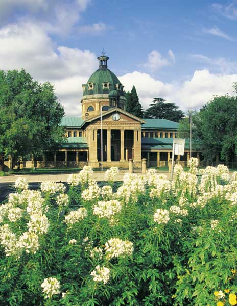 Not Your Typical Summer Holiday, Bathurst in the Central Tablelands of NSW