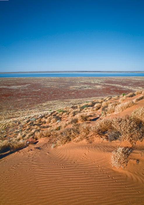 Dunes at Lake Harry