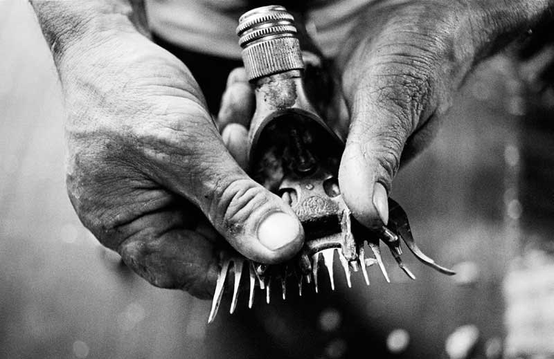 Thumbs & Cutters, 2001: A shearer's hands and handpiece at a shed near Louth, NSW. The shorter teeth of the cutter drive back and forth across the longer teeth of the comb to cut and pick up the wool.