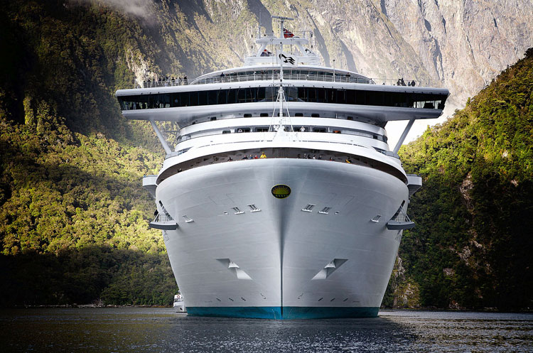 Diamond Princess in the Milford Sound