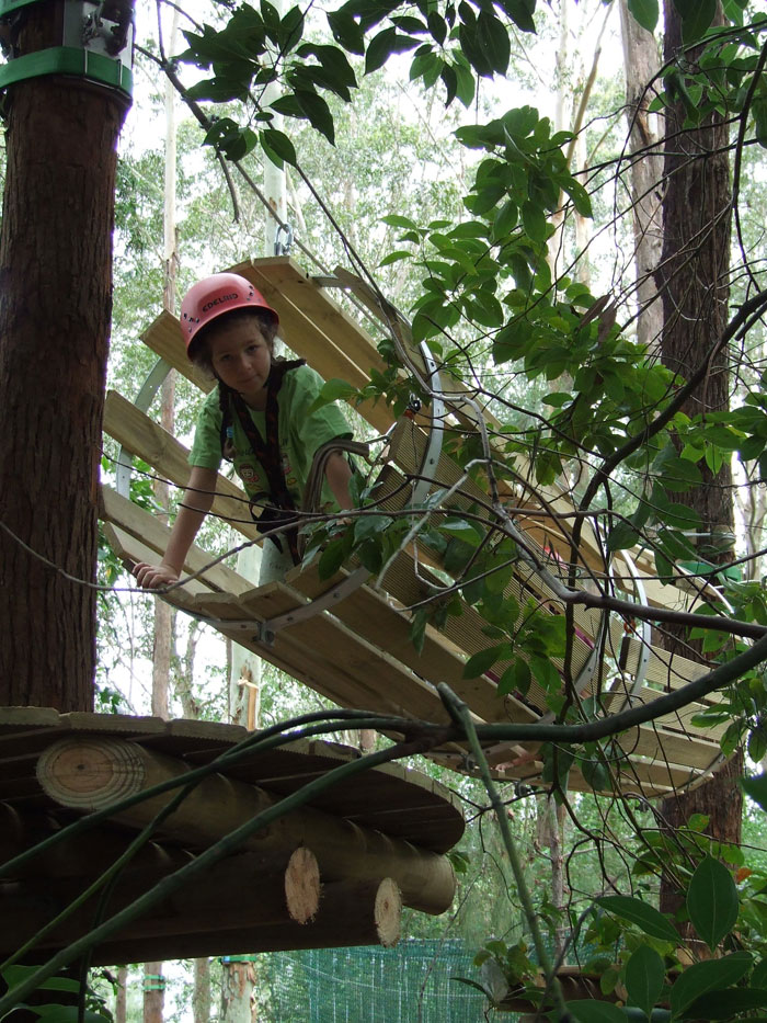 A treetop tunnel (Image from Treetop Adventure Park)