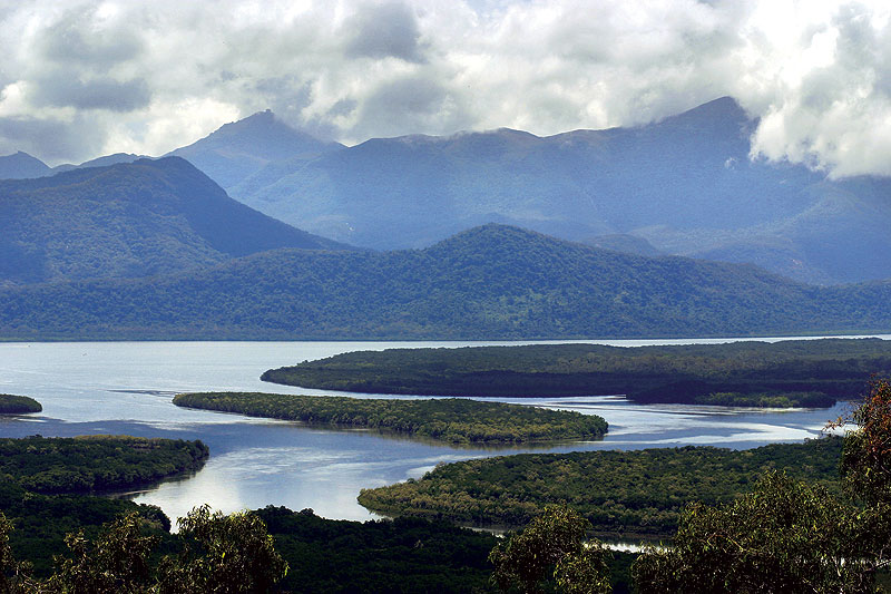 The mangrove-lined creeks and waterways of the Hinchinbrook Channel. Image by Tourism Qld