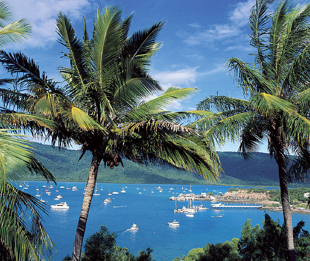 Shute Harbour is thick with charter boats and other means of accessing the islands of the Whitsundays. Image by Tourism Qld