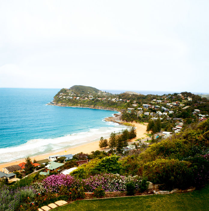 View of Whale Beach