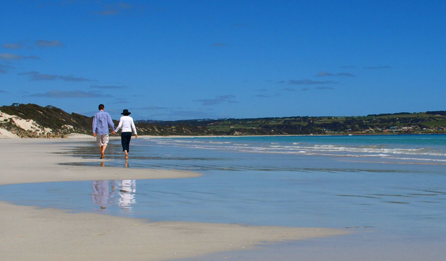 Best Surf Fishing Beaches In South Australia