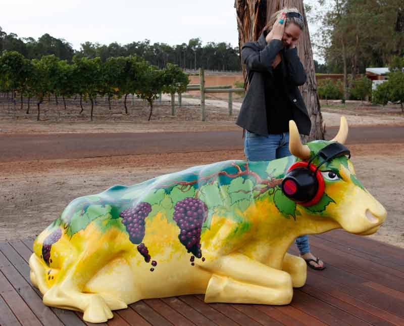 Megan Rocks out with Herd it through the Grapevine at Island Brook