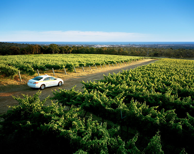 Swim with dolphins, feast on premium food and wine, and explore the stunning beaches, forests and caves of the South West of WA, home to the famous Margaret River wine region.