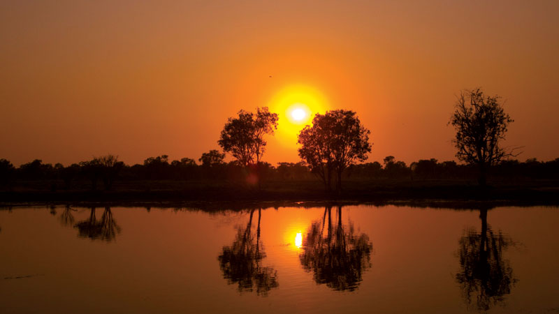 Sunset cruises are also offered at Yellow Water Billabong, giving you a chance to get up close to the natural wildlife