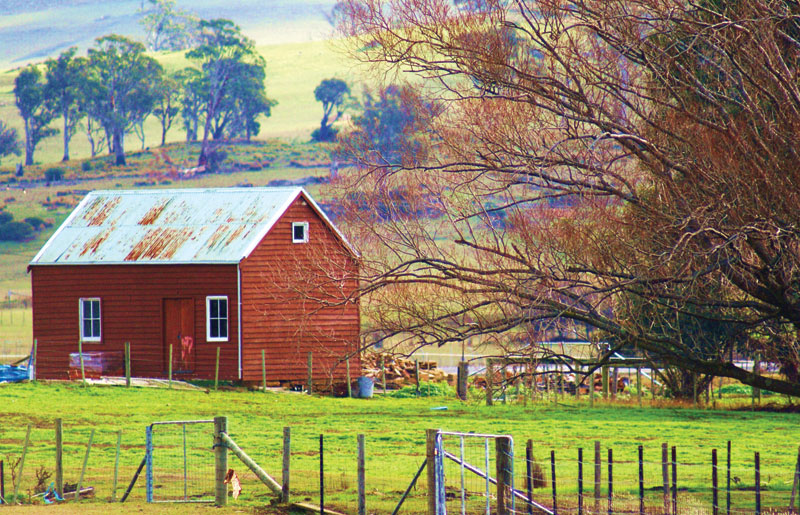 A typically bucolic scene on the outskirts of Oatland, halfway between Launceston and Hobart.