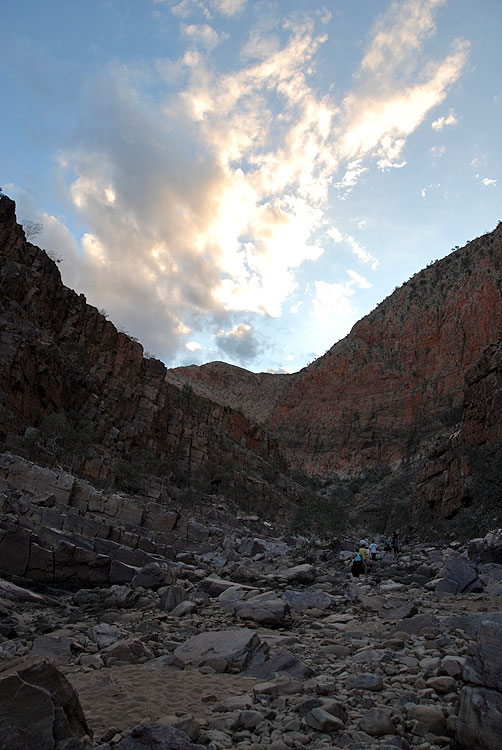 Searching for rock wallabies in Ormiston Gorge. Photo by Matt Plant