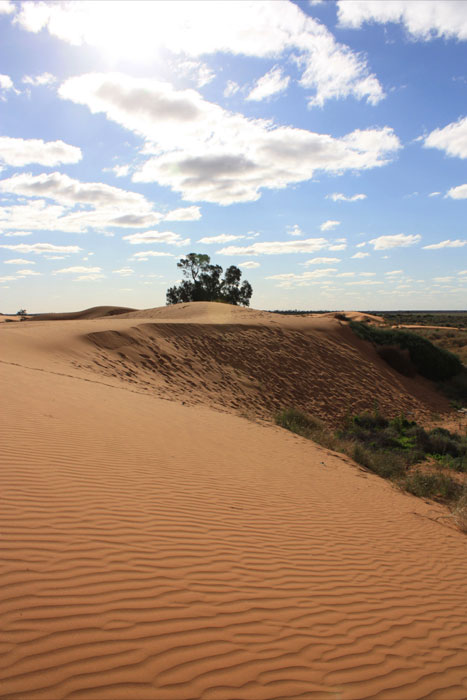 Perry Sandhills, NSW