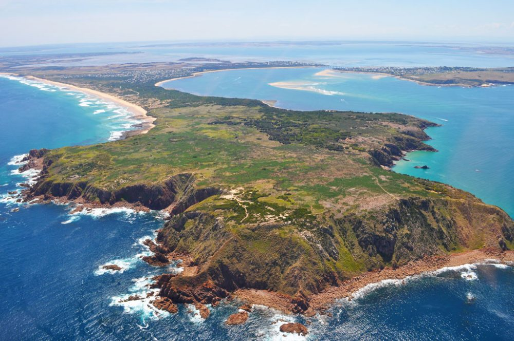Phillip Island: only 90 minutes from Melbourne.